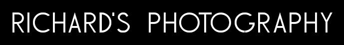 Headshots San Antonio logo